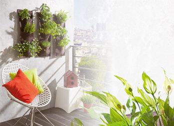 Vertical garden per coltivare piante rampicanti piante for Coltivare more in vaso