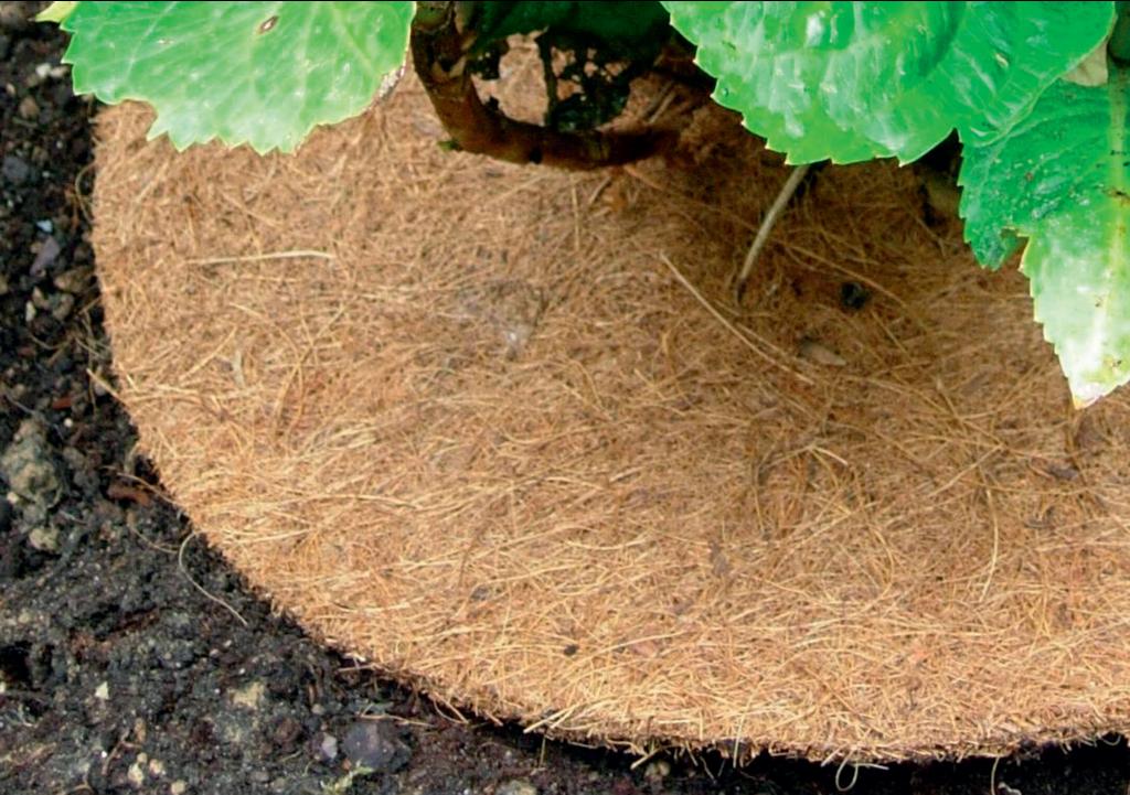 Dischi pacciamanti biodegradabili